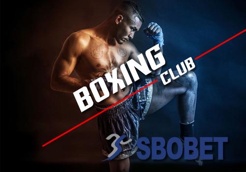 sbobetboxing